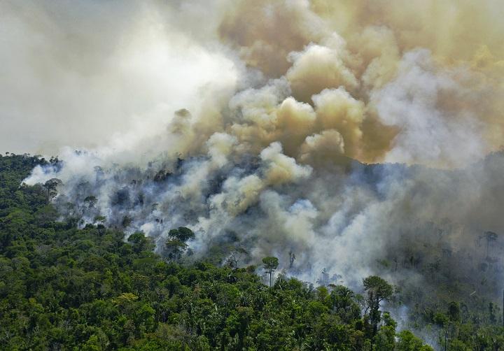 Nuevo récord de deforestación en la Amazonia brasileña en 12 años