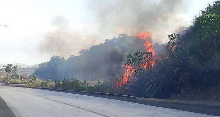 MiAmbiente lanza campaña contra los incendios de masa vegetal para 2021