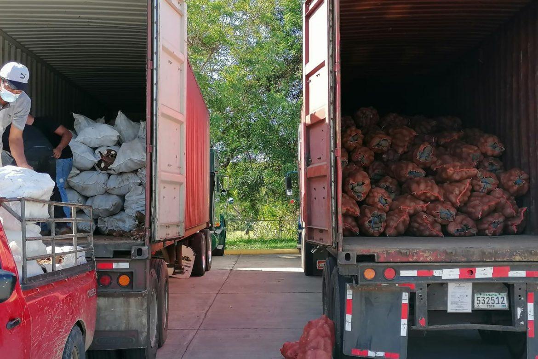 Más de mil quintales de yuca y ñame son trasladados a la capital