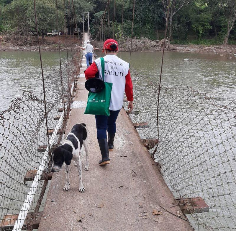Intensifican jornadas de docencia y trazabilidad en Chiriquí