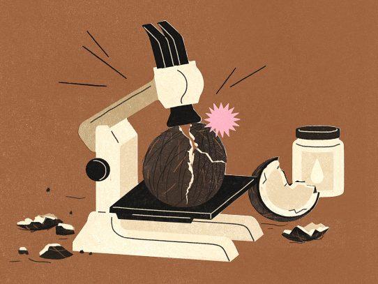 ¿El aceite de coco merece su fama de alimento saludable?