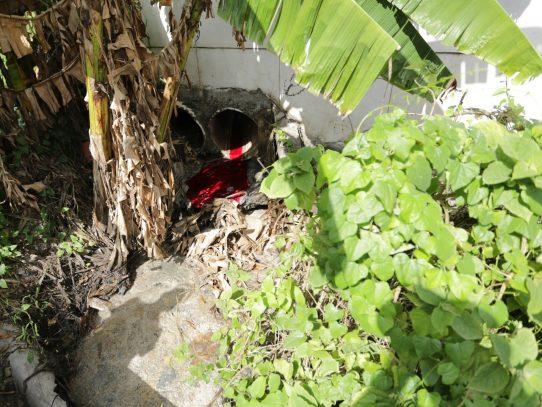 En El Crisol descubren descargas de aguas residuales clandestinas