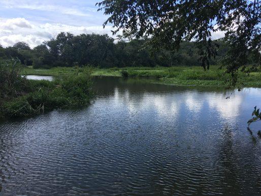 Importancia del recurso agua será tratado en conversatorio