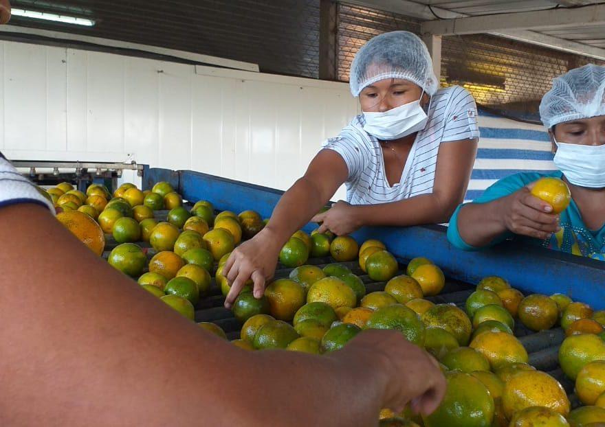 Panamá entre los tres países de la región que tendrá mayor crecimiento económico
