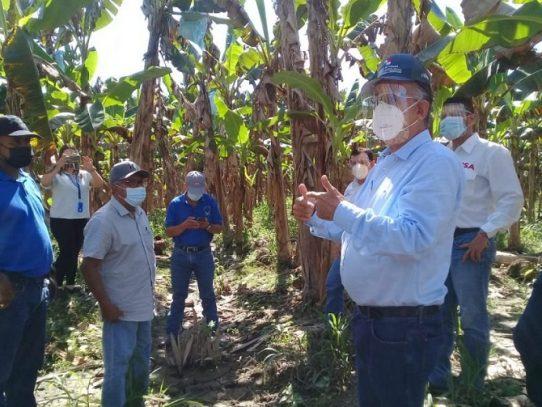 Productores de Barú afectados por huracanes ETA e Iota reciben apoyo gubernamental