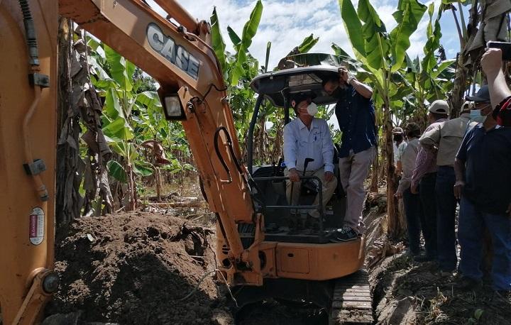 Gobierno destinó al menos $400 mil para apoyo a productores de plátano de Barú