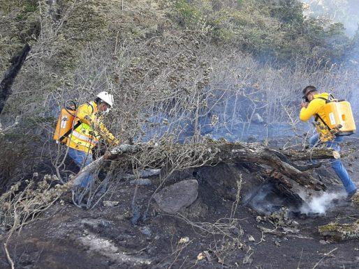 Incendio consumió masa vegetal en Tierras Altas