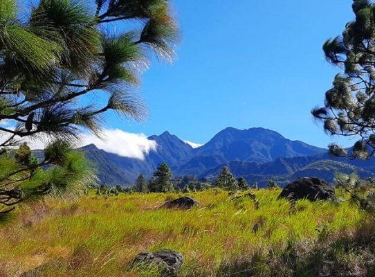 Parque Nacional Volcán Barú es el principal destino turístico de Chiriquí
