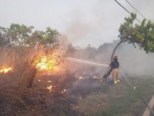 Panamá, Chiriquí y Panamá Oeste las provincias con más casos de incendios de herbazales