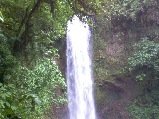 El agua: fuente de salud y vida