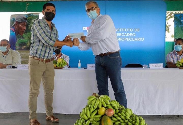 Productores de Bocas del Toro reciben pago por sus cosechas