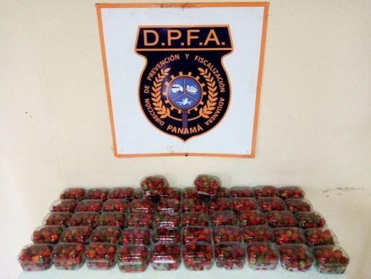 Aduanas detecta el ingreso de fresas de presunto contrabando introducidas por el sector fronterizo de Paso Canoas
