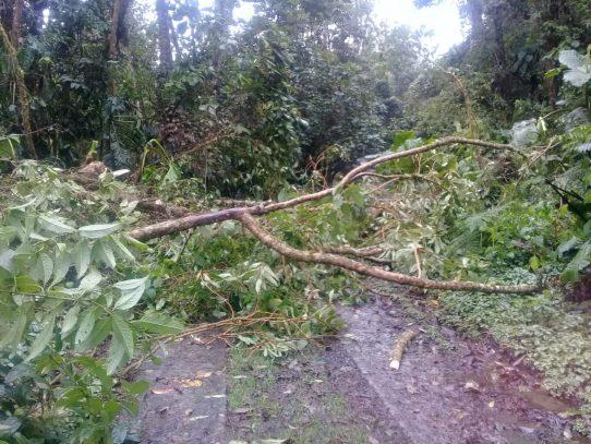 MiAmbiente suspende acceso al parque La Amistad por mal tiempo