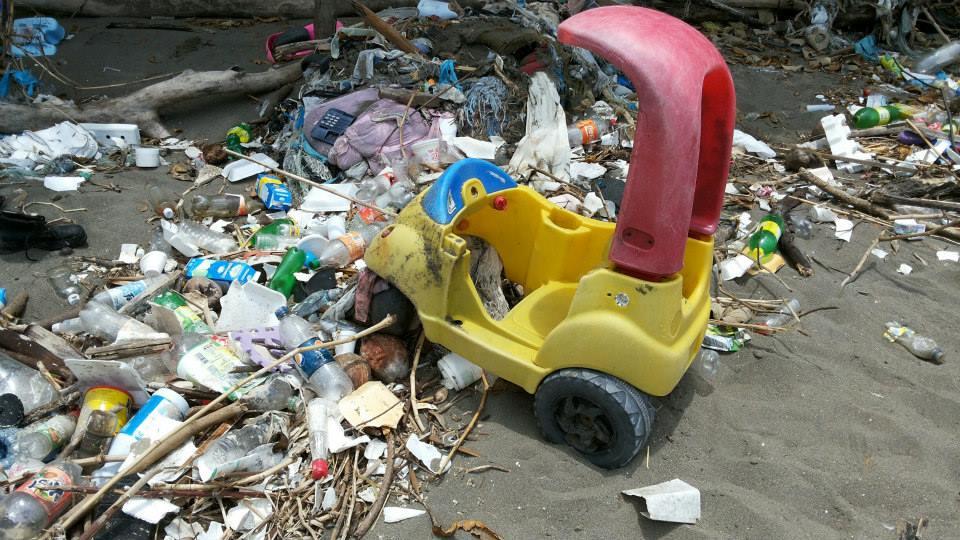 Plástico ahoga los océanos y sus especies