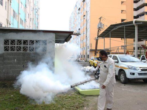 Disminuye en un 81% los casos de dengue en Panamá