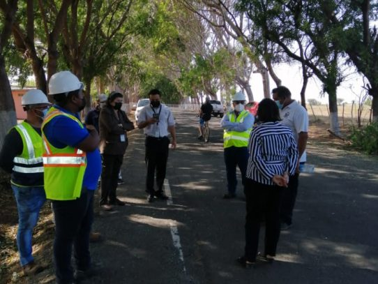 Continúan investigaciones por tala de árboles en el túnel verde en Los Santos