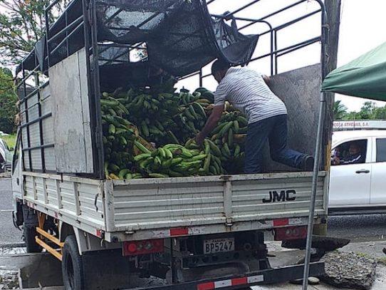 Cadena Agroalimentaria podrá movilizarse en Chiriquí y Veraguas sin restricciones