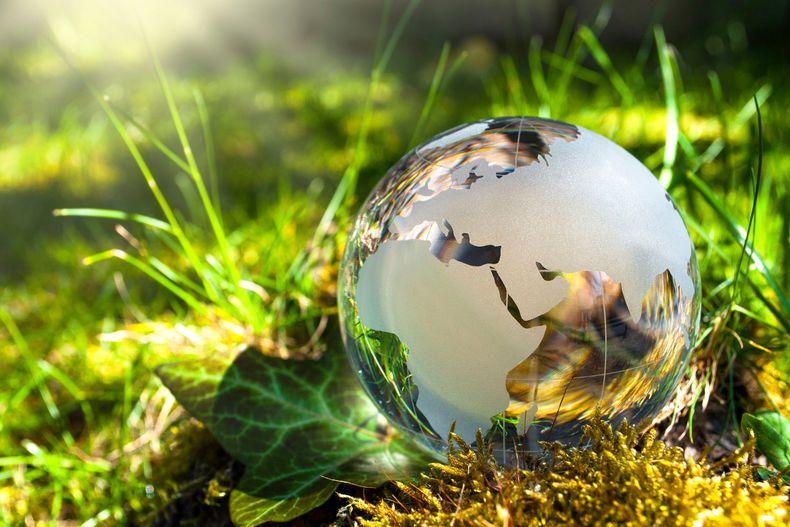 AIE preconiza renunciar a nuevos proyectos de gas y petróleo para lograr la neutralidad carbono en 2050