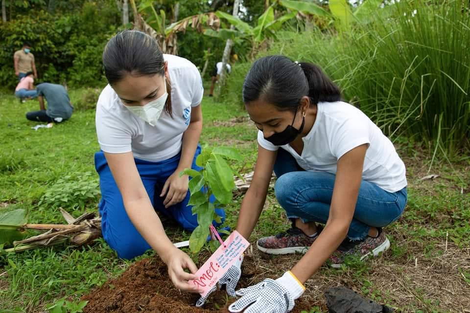El Patronato de Nutrición apoya la reforestación sostenible
