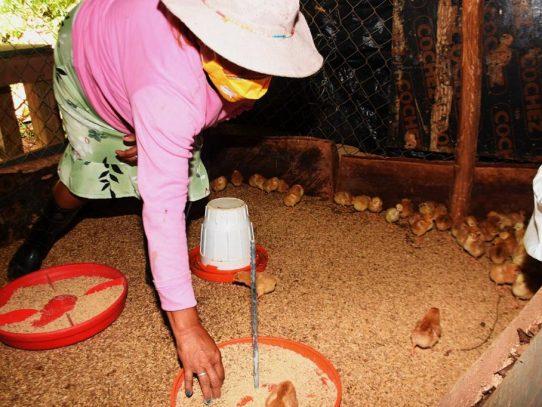 Más de 130 mil mujeres lideren emprendimientos con programas del MIDES