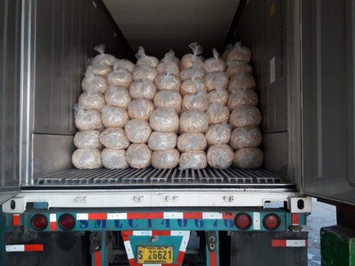 Panamá ha exportado 15 contenedores de plátanos a Estados Unidos