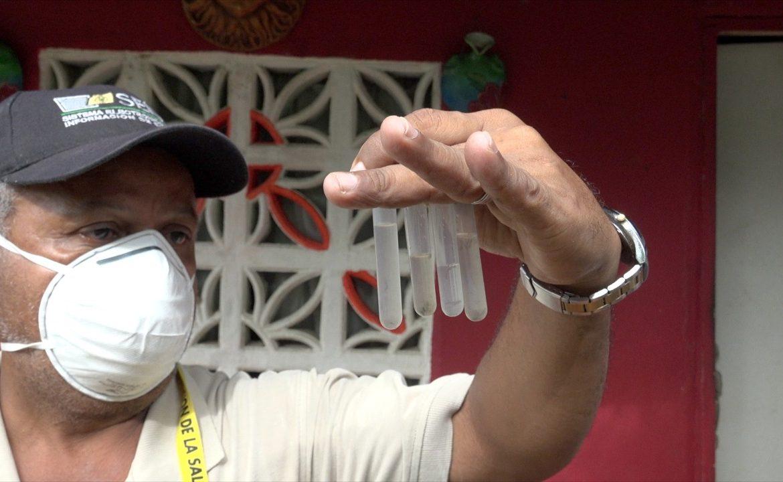 MINSA reitera llamado a eliminar criaderos contra el dengue