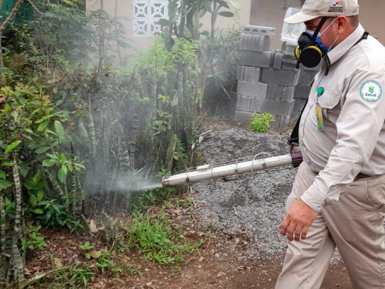 ¡Cuidado! Elevados niveles de infestación de dengue en Chiriquí