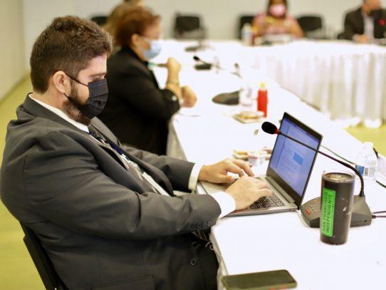 Más afiliación de informales a la CSS intenta comisión temática del DNC