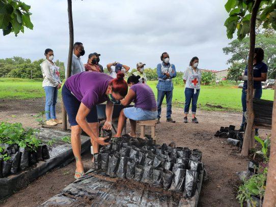 Buscan replicar buenas prácticas de reciclaje en Coclé y Herrera