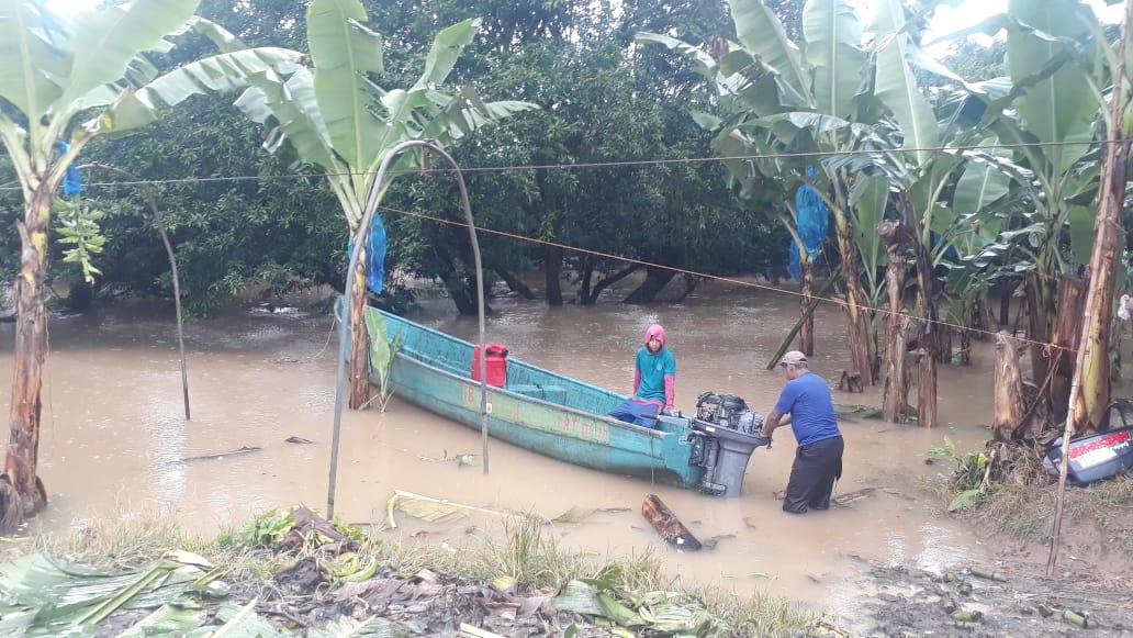 Cadena agroalimentaria en alerta por sistema de mal tiempo