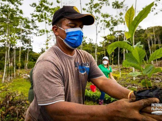 La granja Tulú Arriba inició siembra de café
