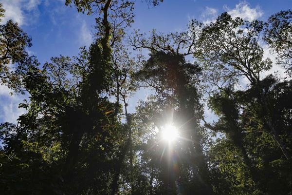 Costa Rica busca atraer inversionistas y pensionados para reactivar economía