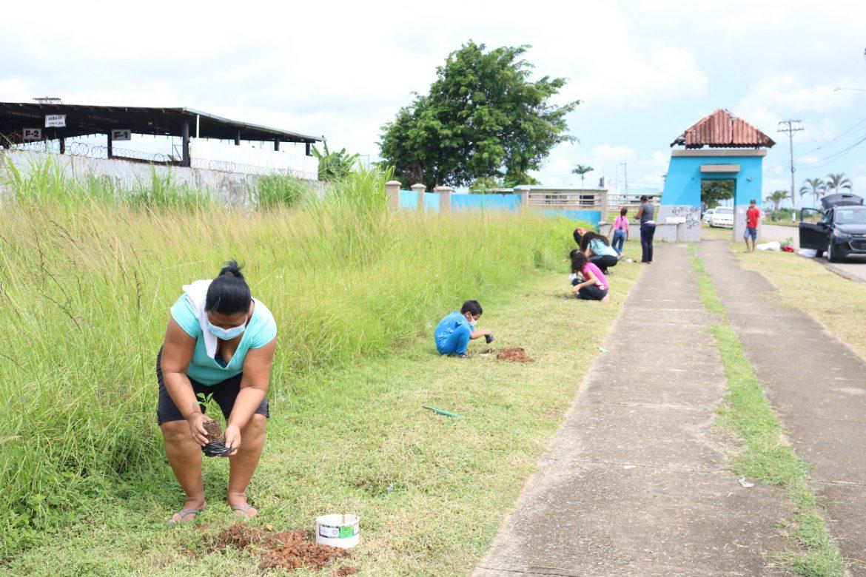 Residentes de San Juan en Pacora se unen en una jornada de reforestación