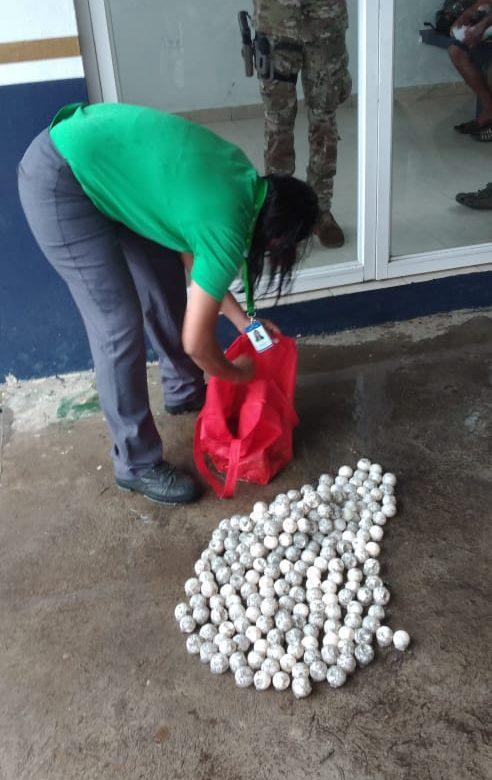 Tres implicados en el decomiso de 229 huevos de tortuga marina