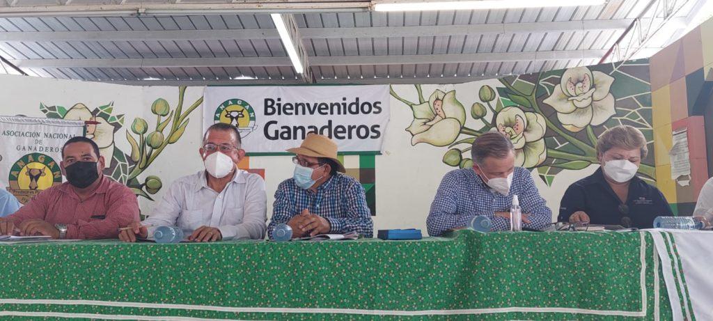 Ganaderos panameños se reúnen en Los Santos para fortalecer el sector