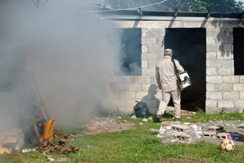 MINSA advierte sobre proliferación del mosquito Aedes aegypty en Chiriquí