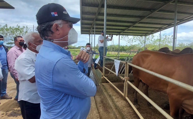 Presentan innovaciones tecnológicas para mejorar el agro panameño
