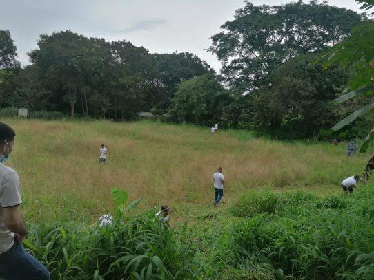 Vivero de Chitré da sus primeros pasos por la reforestación y resocialización