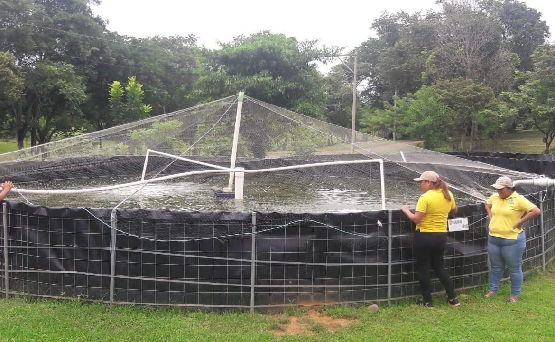 Fincas dedicadas a la acuicultura serán censadas por el INEC