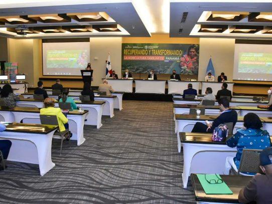 Nueva política de agricultura familiar: recuperación con transformación en el rural panameño