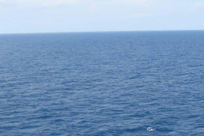 Ayudemos a la conservación de nuestros océanos