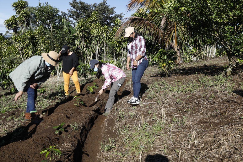 Un grupo de mujeres impulsa producción de café en Renacimiento