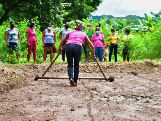 Promueven agricultura sostenible y cultivos amigables con el medio ambiente