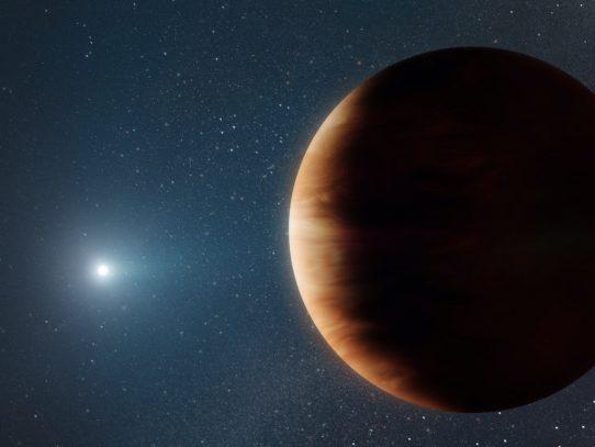 Astrónomos descubren un planeta que sobrevivió la muerte de su estrella
