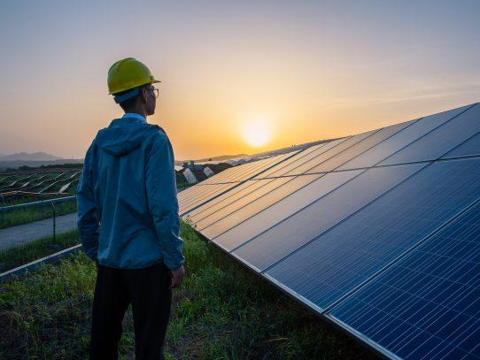 Compromiso al 2050: ser cero emisiones netas en la cadena de valor