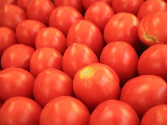 Gabinete aprobó importación de 1,200 toneladas de pasta cruda o pulpa de tomate