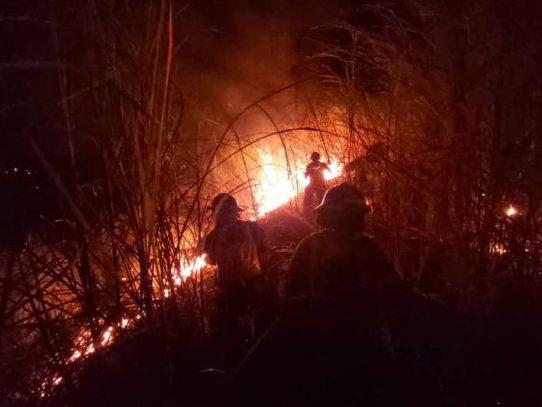 Panamá, Coclé y La Chorrera, áreas con gran cantidad de incendios de masa vegetal