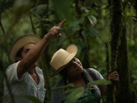 Panamá activa proyecto de turismo verde y la conservación