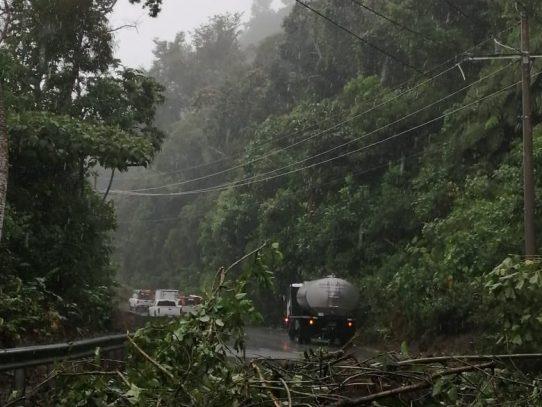 Fuertes lluvias afectan líneas de distribución eléctrica en Chiriquí