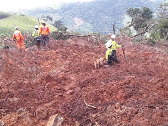 Un total de 24 rescatistas continúan búsqueda y rescate en el distrito de Besikó